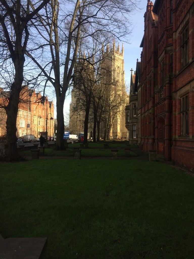 York Minster through the trees