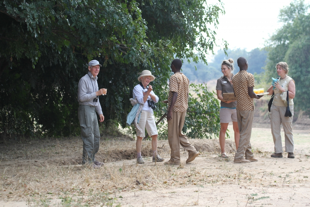Post safari walk  champagne breakfast!