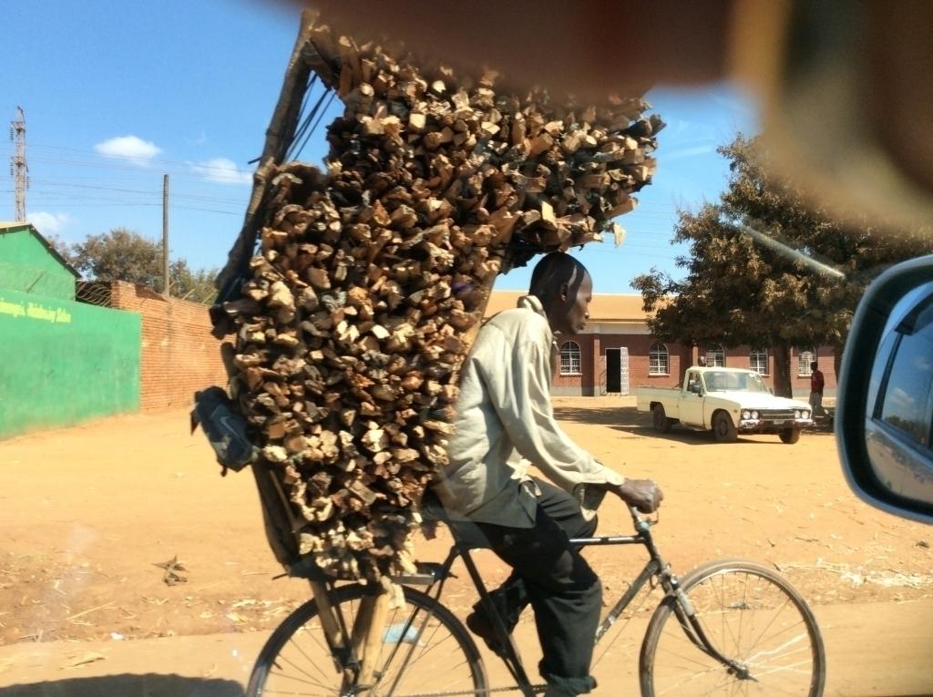 Firewood transporter, Malawi