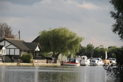 Another Broadland riverside scene, on the Bure