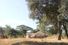 A local scene, Zambia