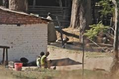 Local scene, Zambia